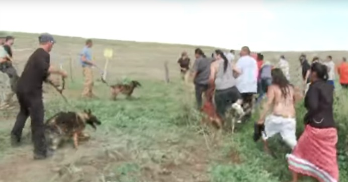 On Sept. 3, the Dakota Access pipeline company attacked Native Americans with dogs and pepper spray as they protested against the $3.8 billion pipeline's construction. (Credit; Democracy Now!)